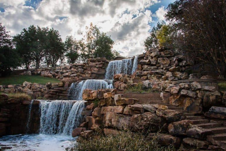 Wichita Falls Euthanasia